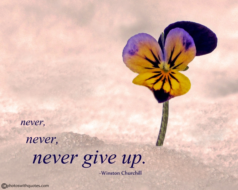 never-never-never-give-up-112-picture